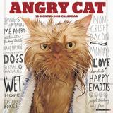 Angry Cat - 2016 Calendar Calendars