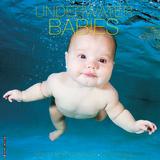 Underwater Babies - 2016 Calendar Calendars