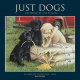 Just Dogs (Jim Killen) - 2016 Calendar Calendars