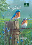 Songbirds - 2016 Pocket Planner Calendars