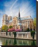 Notre Dame De Paris - France Stretched Canvas Print