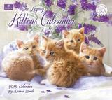 Kittens Calendar - 2016 Calendar Calendars