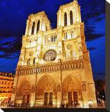 Notre Dame Cathedral Paris Stretched Canvas Print