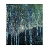 Birch Trees in the Evening Light, 1908-10 Giclee Print by Alexander Jakowlev Golowin
