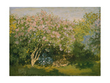 Blooming Lilac in Sunshine, 1873 Giclee Print by Claude Monet