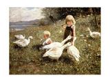 Feeding Geese, 1890 Giclee Print by Alexander Koester
