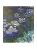 Waterlilies and Agapanthus, 1914-17 Impressão giclée por Claude Monet