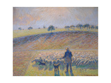Shepherd with Sheep (Berger Avec Moutons), 1888 Giclee Print by  Canaletto