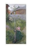 Apple Blossom (Appelblom), 1894 Impression giclée par Carl Larsson