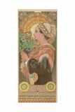 Chardon De Greves (Thistle), Ca. 1901 Giclee Print by Alphonse Mucha