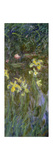 The Yellow Irises, 1914-17 Giclee Print by Claude Monet