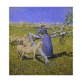 Afternoon in the Alps, 1892 Giclée-tryk af Giovanni Segantini