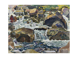 Mountain Stream Near Champéry, 1916 Giclee Print by Ferdinand Hodler
