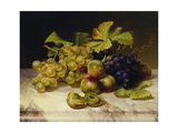 Fruit Still Life, with White and Blue Grapes on a Marble Table, 1834 Giclee Print by Johann Wilhelm Preyer
