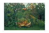 The Hungry Lion, 1905 Giclee Print by Henri Rousseau