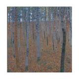 Gustav Klimt - Beech Forest, before 1905 Digitálně vytištěná reprodukce