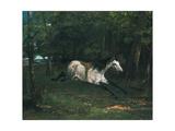 Durchgehendes Pferd (Le Piqueur Ou Le Cheval Dérobé), 1859-1861 Giclee Print by Gustave Courbet