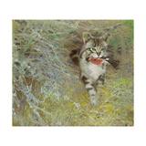 Poaching Cat, 1910 Giclee Print by Jean Bloé Niestle