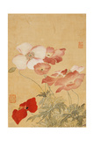 Poppies (Leaf from an Album of Flower Paintings) Lámina giclée por Yun Shouping