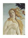 The Birth of Venus (Detail) Giclée-Druck von Sandro Botticelli