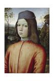 Portrait of a Boy, C. 1480-85 Giclée-tryk af Pinturicchio