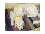 Reclining Dog (Portrait of a Dog), 1909 Posters by Franz Marc