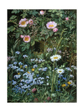 Wild Roses, Forget-Me-Nots and Daisies Giclee Print by Otto Franz Scholderer