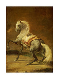 Dappled Grey Horse Giclee Print by Théodore Géricault