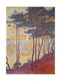 Sailing Boats and Pine Trees, 1896 ジクレープリント : ポール・シニャック