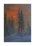 Wintery Forest in the Evening Sun Giclee Print by F Koko-Micoletzky