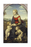 Madonna and Child with the Infant St. John (The Beautiful Gardener), 1507 Giclee Print by  Raffael