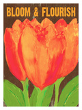 Bloom And Florish Giclee Print by Lisa Weedn