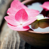 Zen Bowl Photographic Print