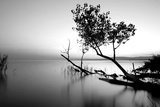 Great Lake Photographic Print by  PhotoINC