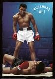 Muhammad Ali - Knockout Metallic Foil Poster Plakat