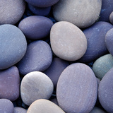 Purple Pebbles Photographic Print
