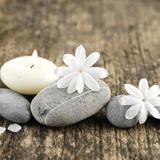 Zen Pebbles Fotografisk tryk