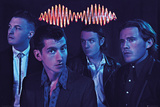 Arctic Monkeys - Group Prints