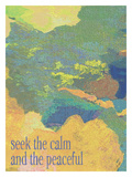 Seek The Calm Giclee Print by Lisa Weedn