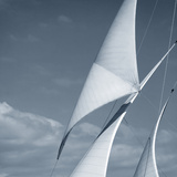 Sails Photographic Print