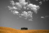 Toscana Landscape Photographic Print