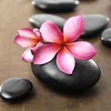 Zen Pebbles Photographic Print