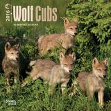 Wolf Cubs - 2016 Mini Wall Calendar Calendars