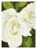 White Floral Giclee Print by Lisa Weedn