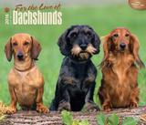 For the Love of Dachshunds - 2016 Calendar Calendars