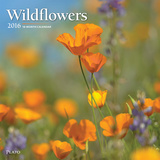 Wildflowers - 2016 Calendar Calendars