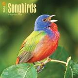 Songbirds - 2016 Calendar Calendars