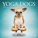 Yoga Dogs - 2016 Calendar Calendars