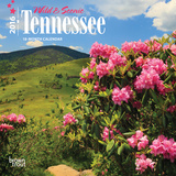 Tennessee, Wild & Scenic - 2016 Mini Wall Calendar Calendars
