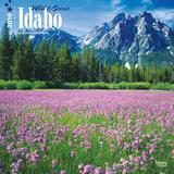 Idaho, Wild & Scenic - 2016 Calendar Calendars